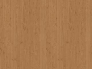 R4601_Golden red Alder