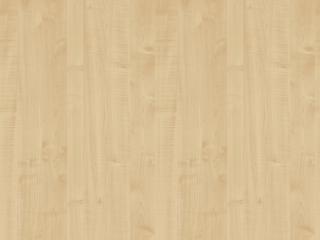 R5184_Royal Maple