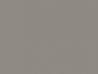 U010_Platin grey
