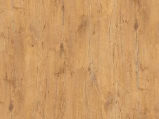 R20027 - Pale Lancelot Oak